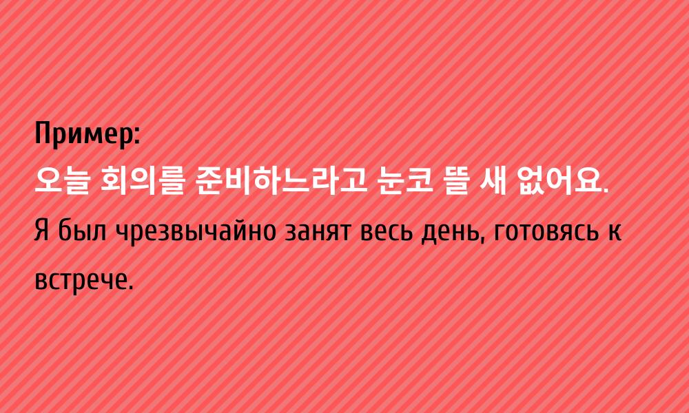 пример употребления идиомы 눈코 뜰 새 없다 в корейском